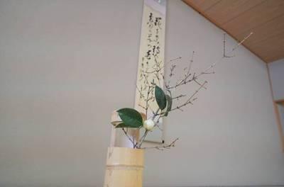 早春に因んだ掛け軸、椿の花も凛と