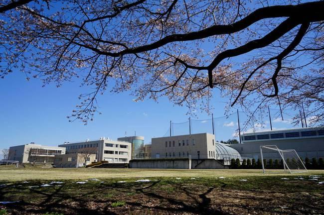 4月13日 春空・桜花①