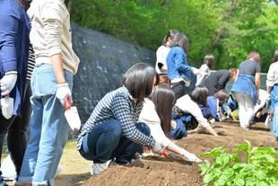 皆さん協力して手際よく、畑に畝づくり