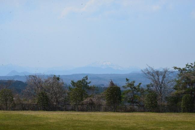 遠くの山々も春の陽も暖かく見えます