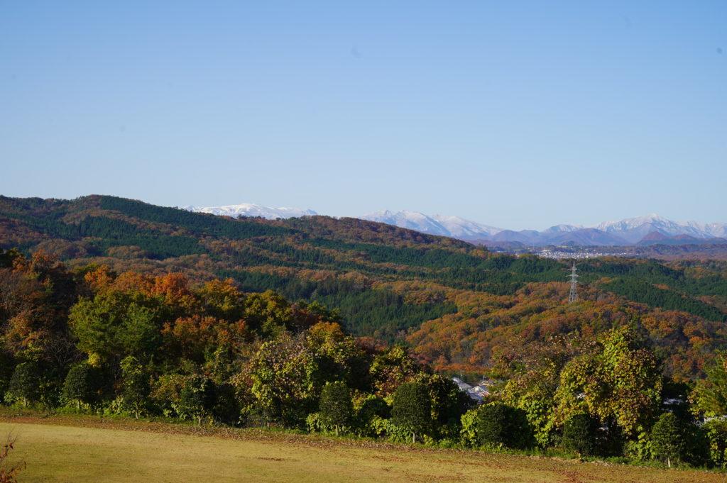 ちょっと山頂を覗かせている蔵王の山々も真っ白に
