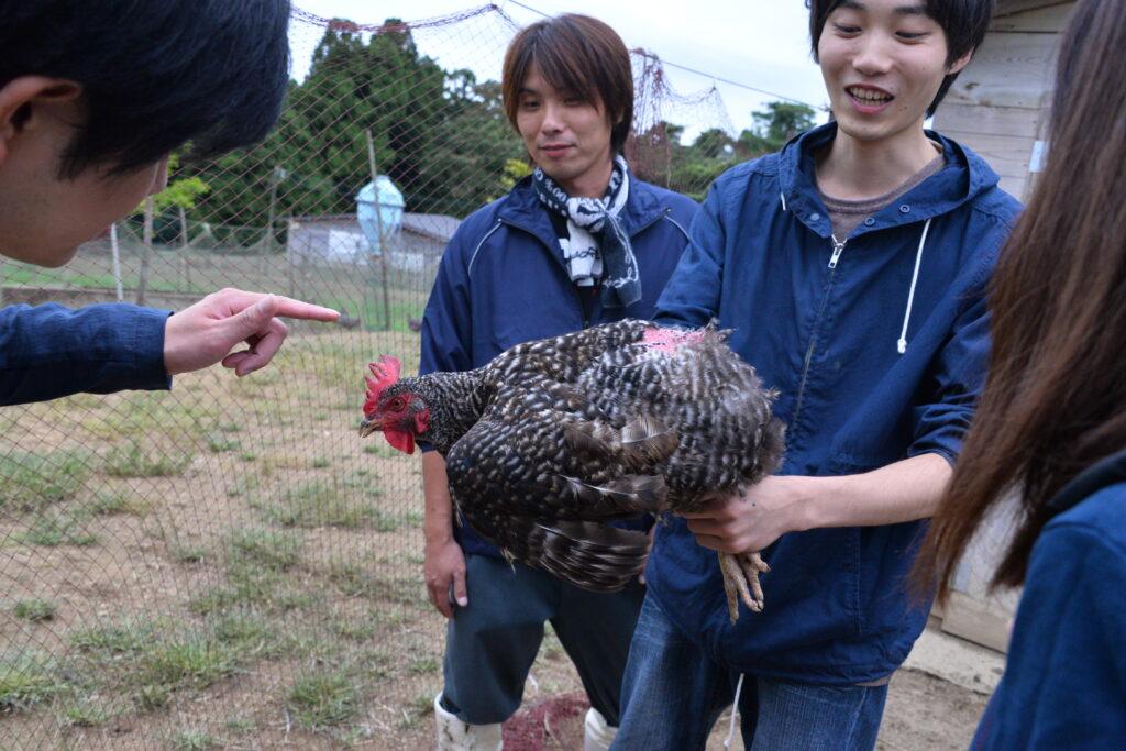 登米市と縄文ファーム(登米市)、聖和短大と産官学の3者でアローカナ卵を使って製品開発に取り組み、東京でも販売しました。平成28年9月12日