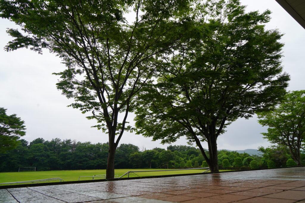 梅雨で図書館前のグランドも雨でぬれてます。