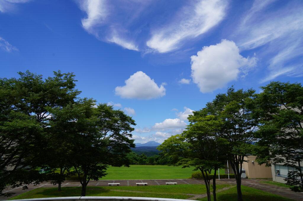夏空が広がる好天気に恵まれました。